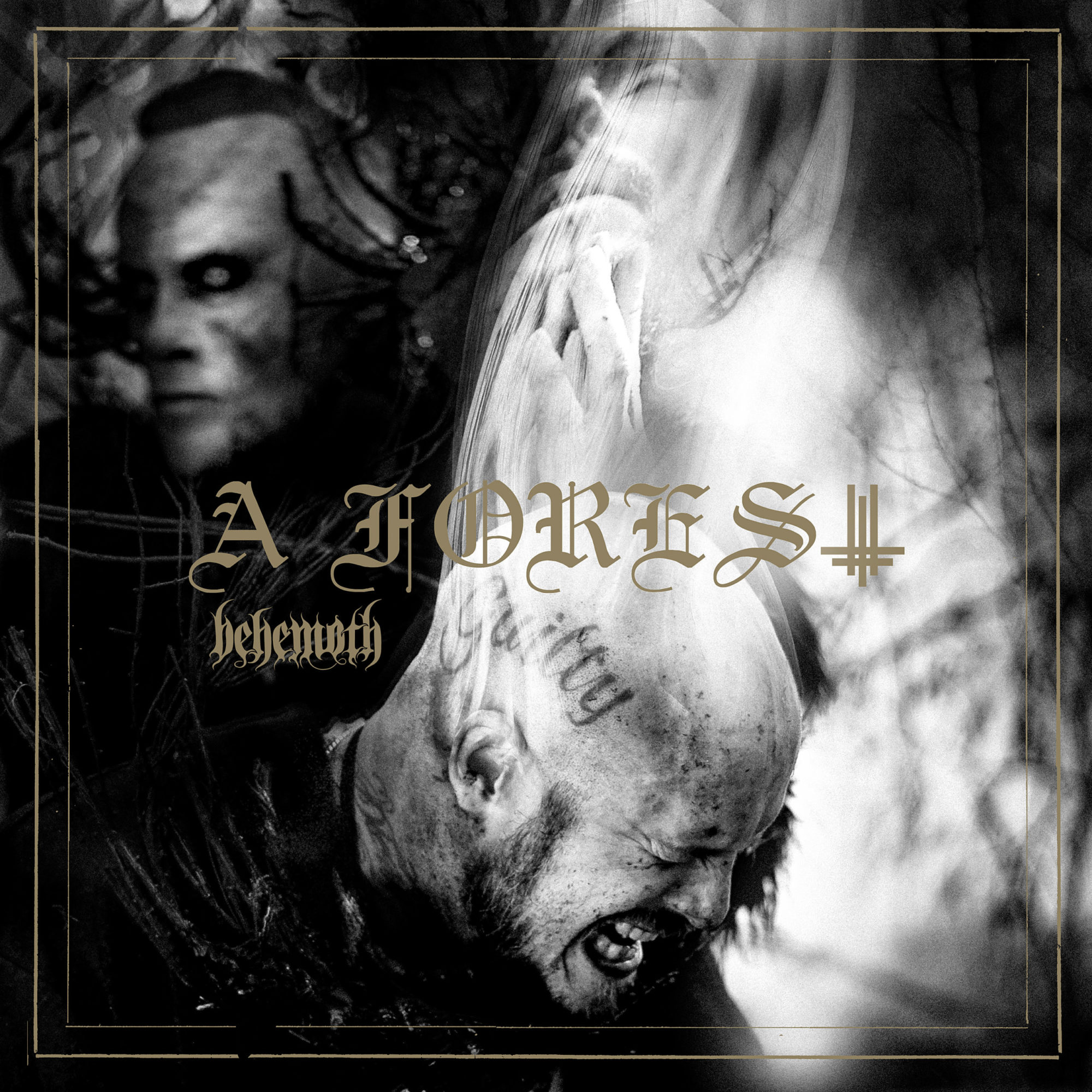 behemoth a forest EP
