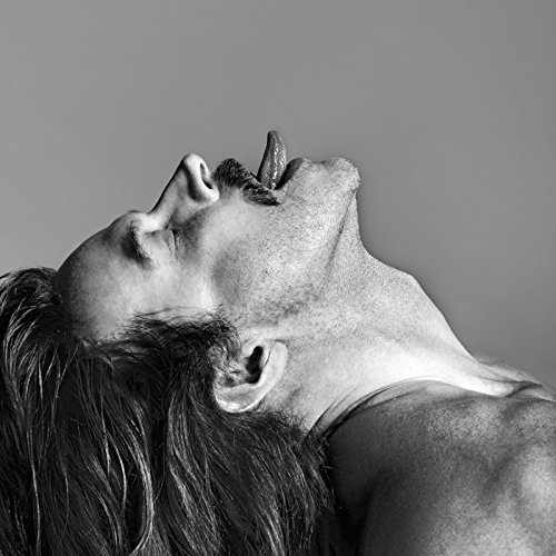 Fischerspooner Sir CD Cover
