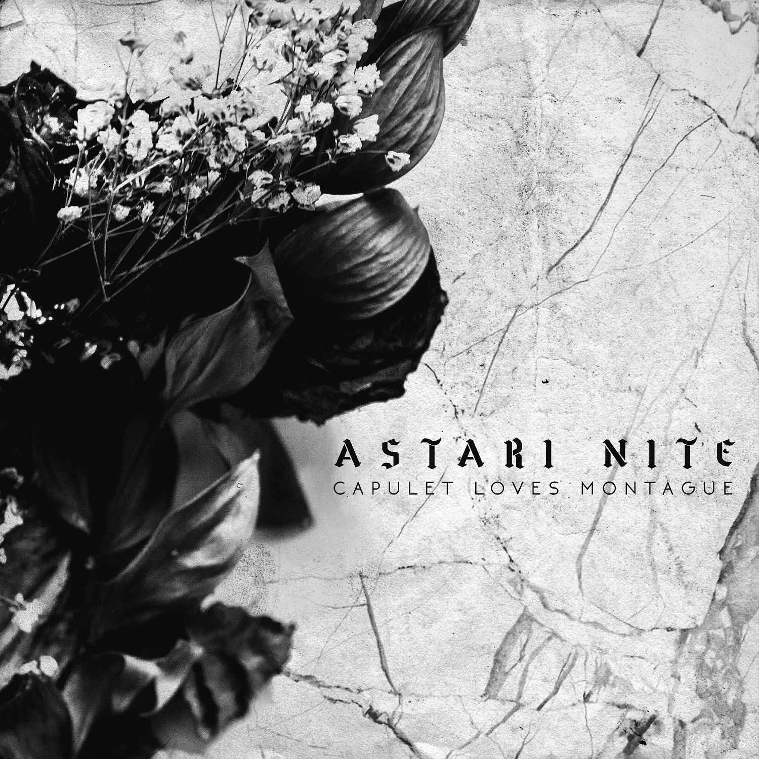 astari nite capulet loves montague cover