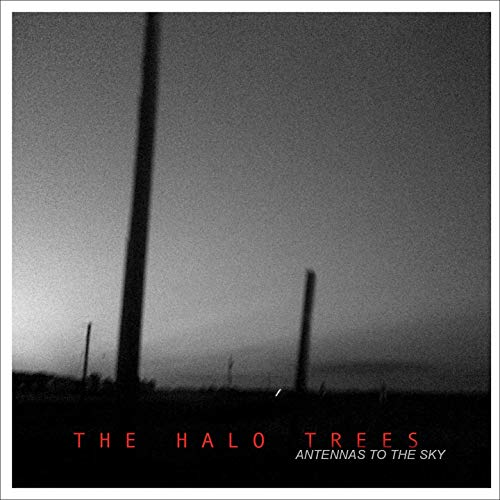 the halo trees antennas to the sky cover
